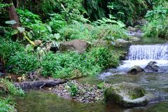 Small waterfalls and river Royalty Free Stock Images