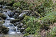 Small waterfalls Stock Photos