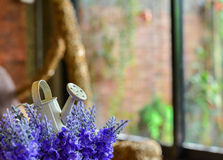 A small watering can on the artificial lavender Stock Photos