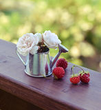 Small watering can with strawberry and small roses Stock Photo