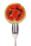 Small watermelon on a fork isolated on white background. Watermelon on a fork isolated on white background stock image