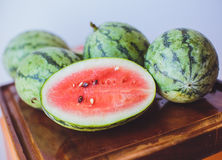 Small watermelon on a wooden board Stock Photography