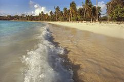 Small waves break on a Caribbean beach Royalty Free Stock Images