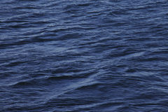Small waves on the sea surface. Small waves on the blue surface of the sea Stock Images