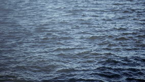Small waves on water close-up stock video