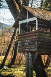 Autumn Forest Treehouse stock image