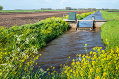 Small weir for water level control in a Dutch polder Royalty Free Stock Photo
