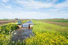 Small weir for water level control in a Dutch polder Stock Photography