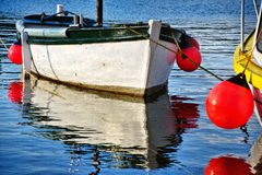 Small White Boat Stock Image