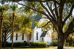 Small White Church Past Oak and Palm Trees Royalty Free Stock Photography