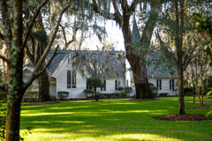 Small White Church Under Southern Oaks Royalty Free Stock Photography