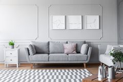 Small white commode with green plant in grey pot on to of it next to comfortable couch with pillows in scandinavian living room, r. Eal photo with copy space and stock photography