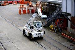 Small white crane Stock Photos