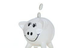 Small white piggy bank Royalty Free Stock Photography