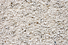 Small white stones (the background) Royalty Free Stock Image