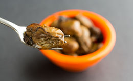 Small whole smoked oyster on a fork Stock Photography