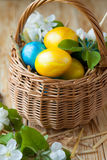 Small wicker basket with Easter eggs Stock Image