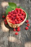 Small wicker basket with fresh ripe raspberries royalty free stock images