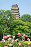 Small Wild Goose Pagoda Royalty Free Stock Photos