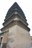Small wild goose pagoda Stock Photos