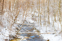 Small winter river Stock Image
