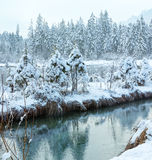 Small winter stream with snowy trees. Stock Photography