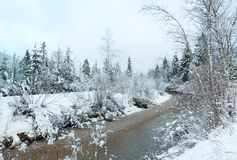 Free Small Winter Stream With Snowy Trees. Stock Images - 51676384