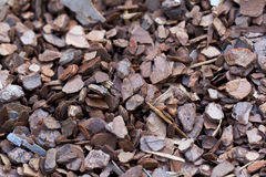 Small Wood chip Stock Image