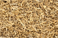 Small wood chips close up. On the entire frame Royalty Free Stock Photography
