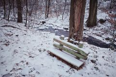 Small Wooden Bench in Forest Royalty Free Stock Photography