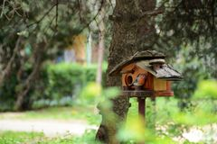 A wooden house for birds in a green yard stock photo