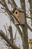 Small wooden birdhouse on tree stock photography