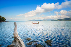 Small wooden boat and tree trunk in a sea bay. Punta Ala, Italy Stock Image