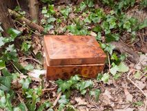Small wooden box outside in nature forest wood special. Essex; england; uk royalty free stock photo