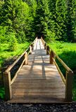 Small wooden bridge among the forest. Lovely nature scenery in summertime. location Synevyr National Park, Ukraine stock photo