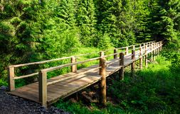 Small wooden bridge among the forest. Lovely nature scenery in summertime. location Synevyr National Park, Ukraine stock images