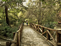 Small wooden bridge Stock Photography