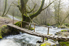 Small wooden bridge over the mountain rive Stock Photography
