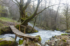 Small wooden bridge over the mountain rive Stock Image