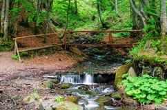 A small wooden bridge over a mountain river Stock Image