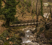 Small Wooden Bridge over a Stream in Forest at winter Stock Photo