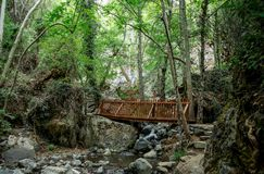 A small wooden bridge over a stream on a way to Caledonia waterfall near Platres Stock Photography