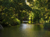Small wooden bridge over water Stock Photo
