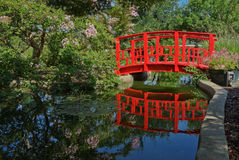 Small wooden bridge painted red and reflecting in pond. Royalty Free Stock Images