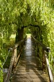Small wooden bridge under willow tree at  Bishop Palace,Wells Royalty Free Stock Photo