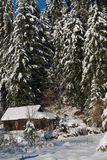 Small wooden  cabin in wildernes covered with fresh snow Royalty Free Stock Photography