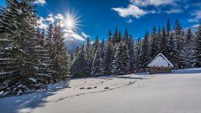 Small wooden cabin in winter in the mountains at sunrise, Tatras Stock Images