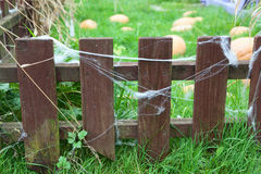Small wooden fence with web on planks Royalty Free Stock Image