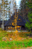 Small wooden grill house in the autumn forest, Finland Stock Photo