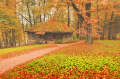 Small wooden house in the forest - foggy autumn landscape Stock Photo